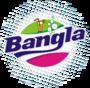 Bangla Corporation