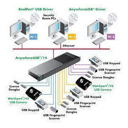 Network Peripheral