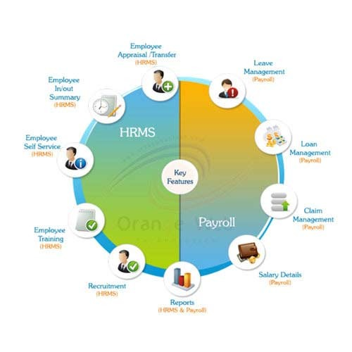 HR & Payroll Solutions - MHS HRMS Software Wholesale Trader