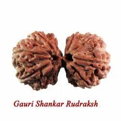 Gauri Shankar Rudraksha