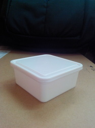 Disposable Square Spice Container