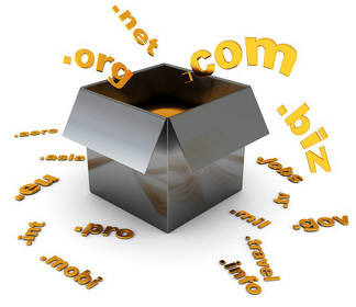 Domain Name Registration Services