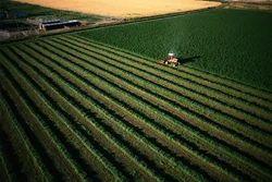 Agricultural Lands Sale