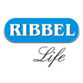 Ribbel International Ltd.