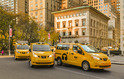Taxi And Guide Service