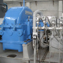Biogas Fired Boilers