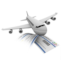 Domestic Air Ticketing Service
