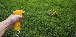 Garden Pest Management