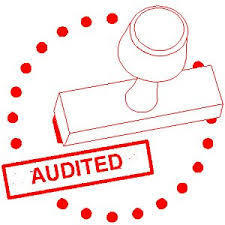 Management Auditing Services