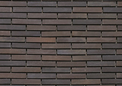 Wall Cladding Tile View Specifications Details Of By Derwal Tiles Gurgaon Id 8231392388