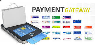 Payment Gateway Solutions in Ghaziabad by Design The Website
