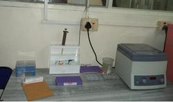 Anemia Health Test