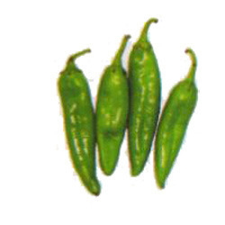 Green Chillies Seed