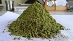 Drumstick Leaves Powder