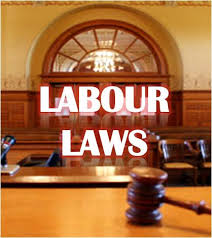 Labour Law Services
