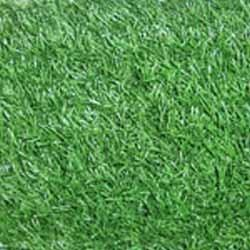 Artificial Synthetic Grasses