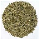 Organic Pearl Millet