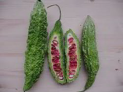 Karela Fruit
