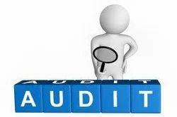 Internal Accounting Auditing Service
