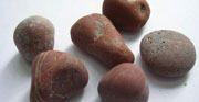 Un Polished Red Jasper Pebbles