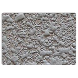 Spray Coat Textured Painting At Rs 45