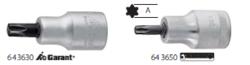 Screwdriver Bits for Torx Screws
