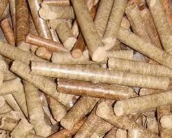 Biomass Pellet - Bagasse Pellet Latest Price ...
