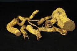 Salacia Root