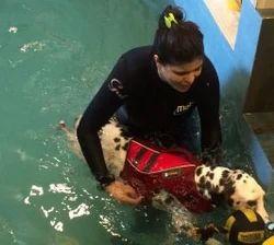 Splashing Training