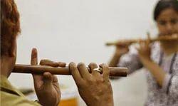Flute and Veena Schools