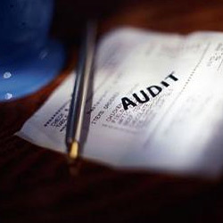 Audit Management Services, Company, Pan India
