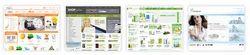 E-Business/E-Commerce Services
