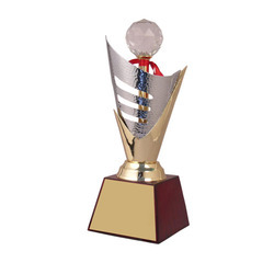 Acrylic Diamond Premium Metal Trophy