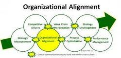Organizational Alignment Sales Management