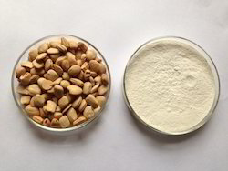 Tamarind Starch Powder