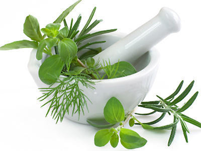 importance-of-drying-your-herbs-for-preservation