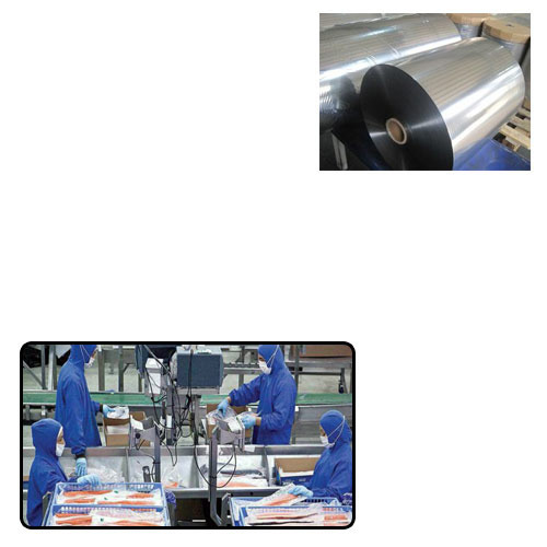 Metalized CPP Film for Food Packaging