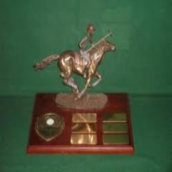 Polo Trophies