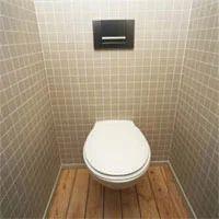 Toilet Tile