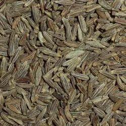 Dry Cumin Seed