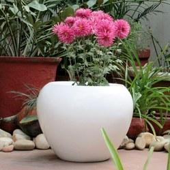 Garden Pot in Jaipur Rajasthan India IndiaMART