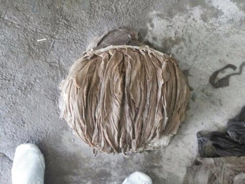 20 kg Buffalo Salted Omasum, Packaging: PP Bags