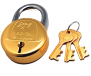 Security Locks (Godrej)