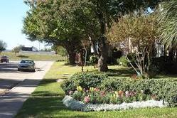 Residential And Commercial Landscape Design