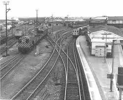 Yard Rail