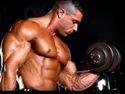 Gym Body Fitness Club