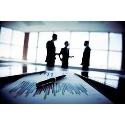 Investment Consultancy Service