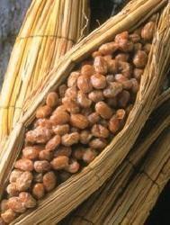Nattokinase for Nutrition Supplement