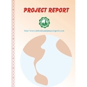 Project Report of Wood Wool Board