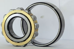 Multi Row Cylindrical Roller Bearings